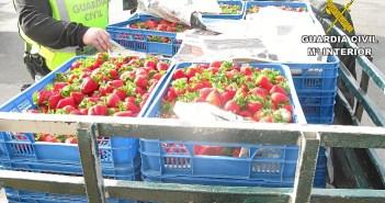 Fruta recuperada por la Guardia Civil