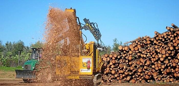 Biowood pellets
