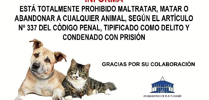 CARTEL MALTRATO ANIMALES