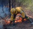 Imagen de archivo de un bombero trabajando en la extinción de un incendio forestal. (Foto: Plan Infoca)