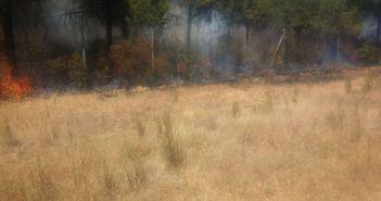 Imagen de las llamas tomada por un vecino de la zona y enviada a HuelvaYa.