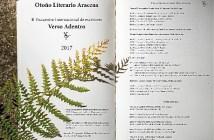 Programa Verso adentro