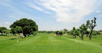 DSC_0177_golf-e1505293161500
