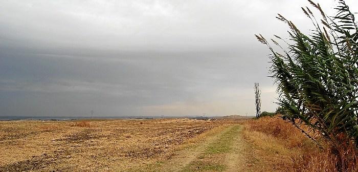 camino de la lama.JPG