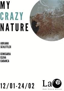 My Crazy Nature