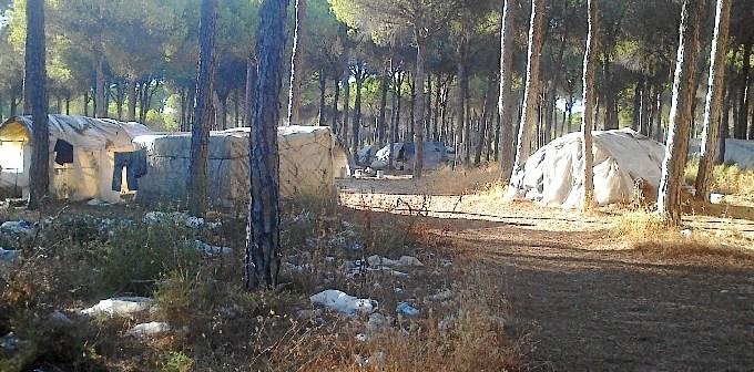 Asentamiento chabolista
