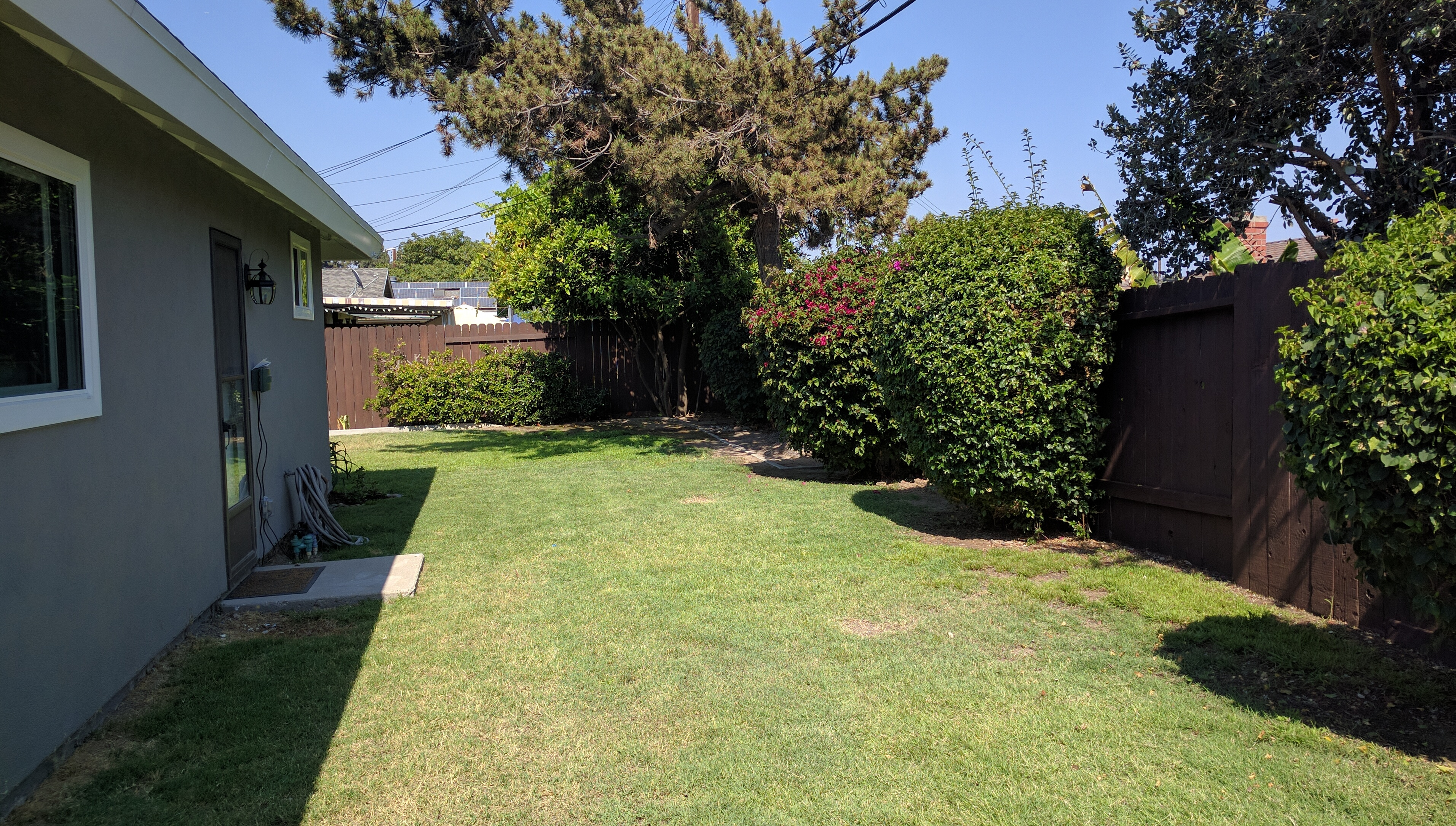 3348 Rivermore - Back Yard