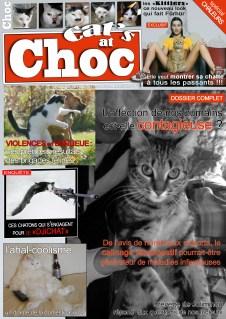 cat'sAtChoc