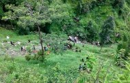 At least 25 people killed in Kavre bus fall