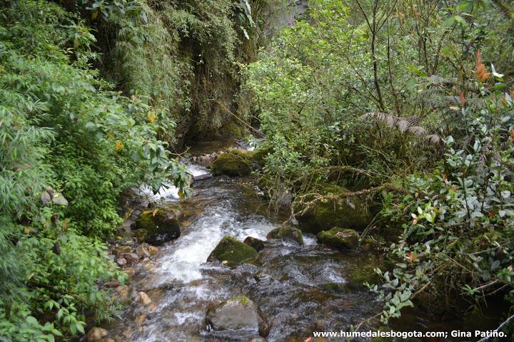 Caminata a Mundo nuevo en La Calera Cundinamarca