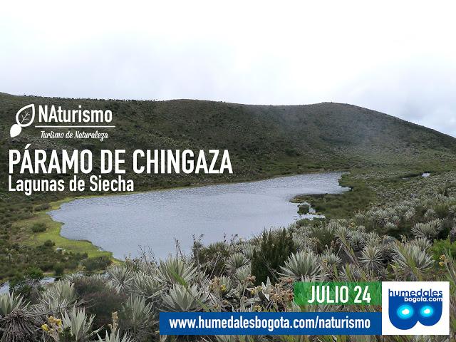 Este domingo caminata a las lagunas de Siecha en el páramo de Chingaza