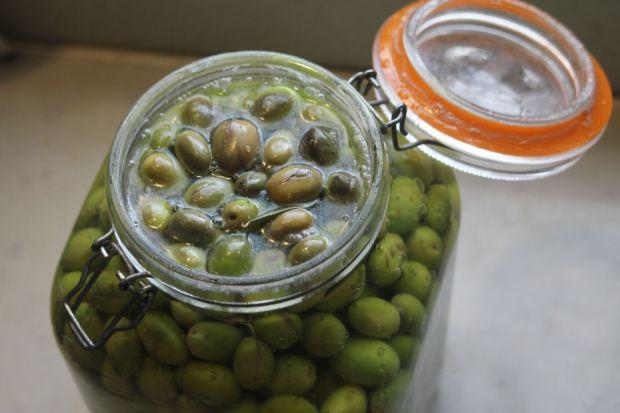 olives2015B-1