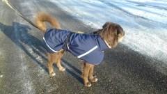Mantel mit Bauchlatz 1