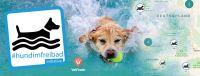#hundimfreibad - Hund im Freibad