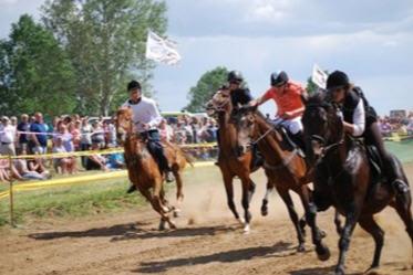 The Voivodina Gallop