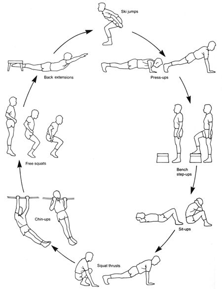 simple diagram of resistance training