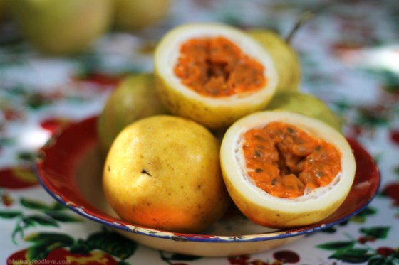Passion-Fruit-DR