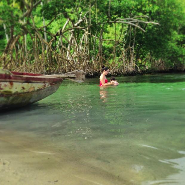 manglares-en-cano-frio-playa-rincon-dominican-republic