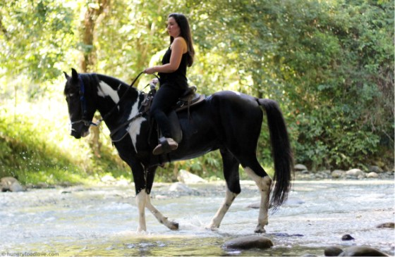 riding-horse-river-dominican-republic