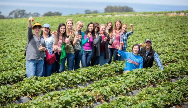 visit-california-strawberry-farm