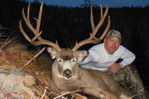 Mule Deer Hunts 2012