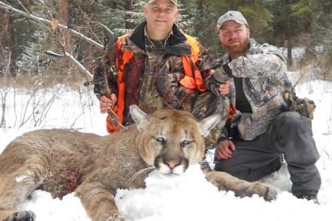 Mountain Lion Hunts 2011