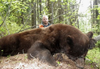 Cody Bear Hunt