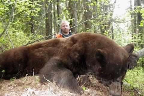 Black Bear Hunts 2011