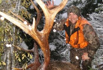 Archery Elk Hunts Montana (3)