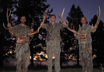Elk Hunts with Cody Carr 4-6 (1)