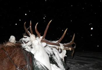 Hunting camps montana 2012 (1)
