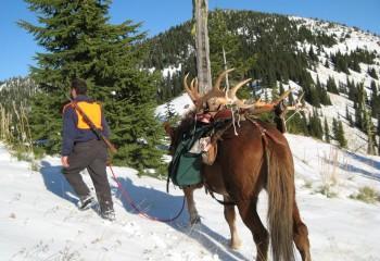 Montana hunting camps photos