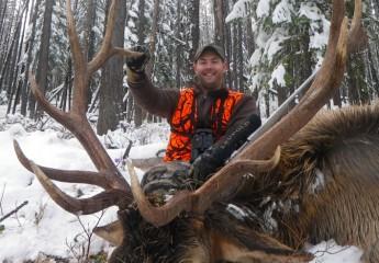 Rifle Elk hunts montana