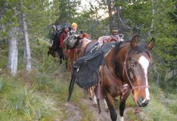elk hunting camp (4)