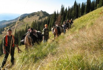 elk hunting camp (6)