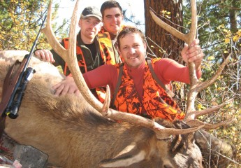 elk hunting outfitter Montana 8 (7)