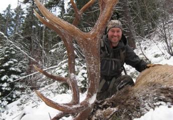 elk hunting trips montana