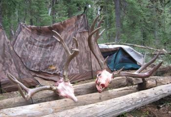 elk hunts 2007 (3)