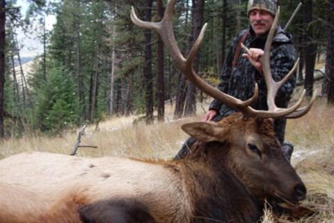 Elk Hunting Trips 2007