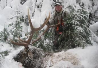 elk hunts montana 2010 (2)