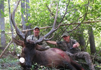 elk hunts montana 2012 (6)