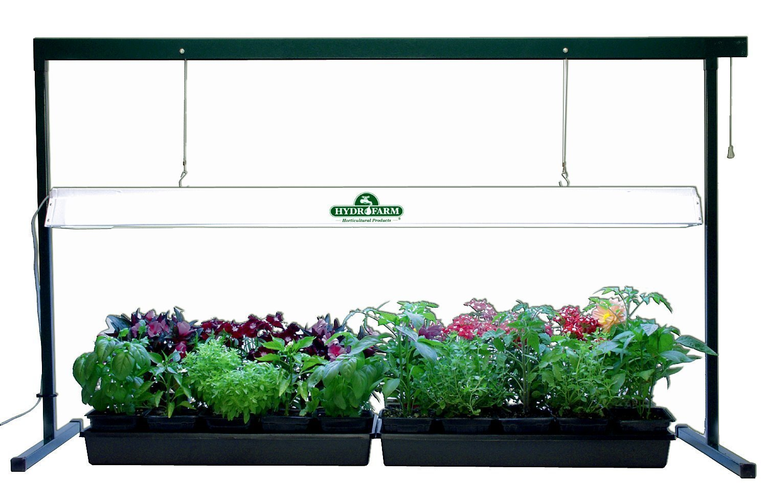 Grow Lights For Indoor Plants Plant Grow Lights Excellent Lighting For Optimum Plant