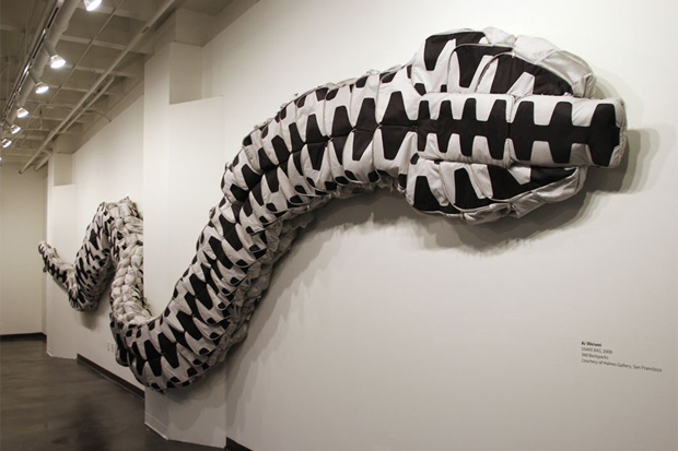 Image of Art Platform 2011: Ai Weiwei