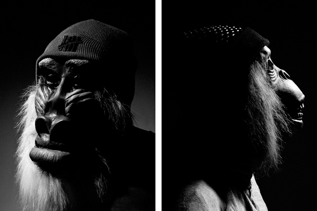Image of The Chimp Store: &quot;Barnet of the Apes&quot; Editorial
