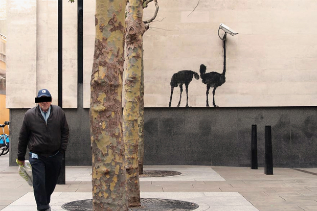 Image of Banksy at The National Gallery, London