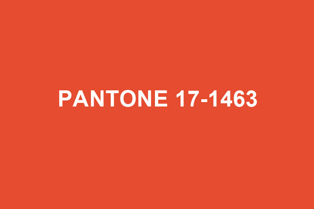Image of Pantone 2012 Color of the Year: Tangerine Tango