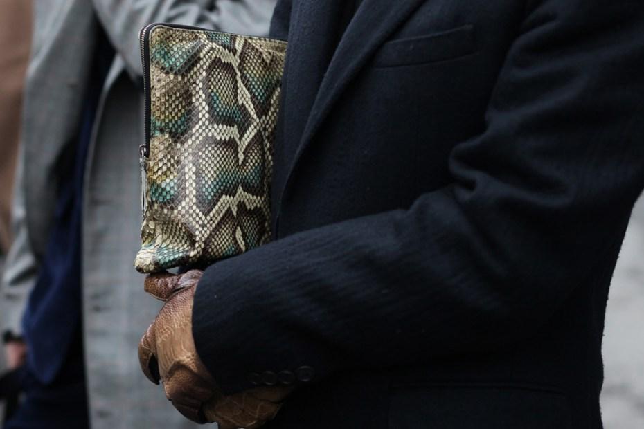 Image of Streetsnaps: Python