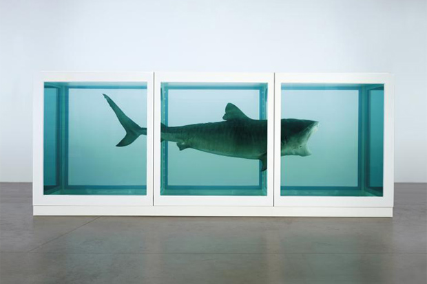 Image of Damien Hirst Website Launched