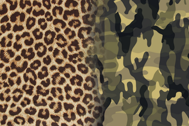 Polls: Cheetah Print vs. Camo | Hypebeast