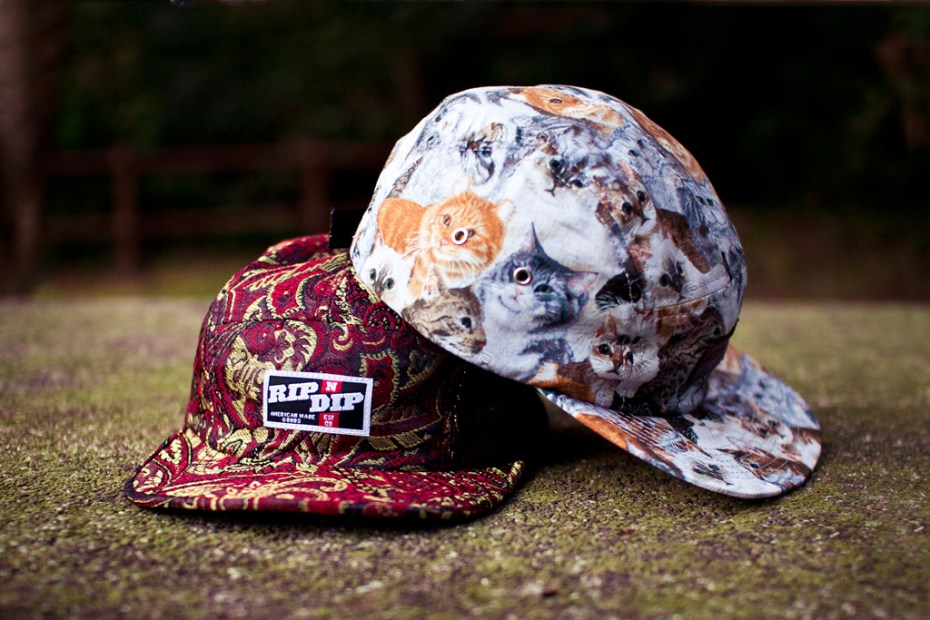 Image of RIP N DIP 2012 Spring/Summer Camp Hats